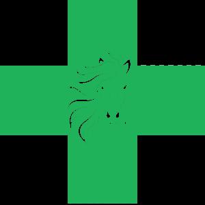 Medical Veterinar